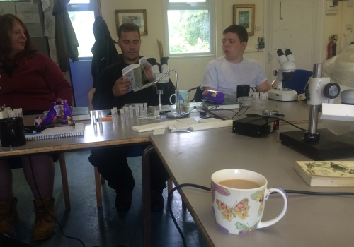 Back in the classroom I was given the butterfly bucket of tea to try and revive me.